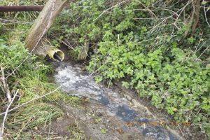 Somerset water pollution