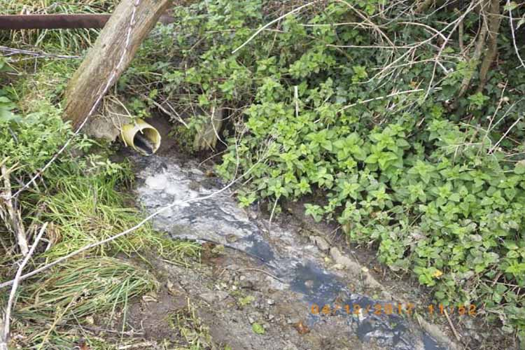 Somerset water pollution